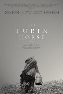 Analysis of The Turin Horse